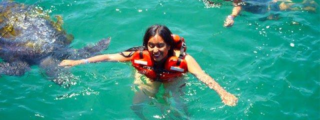 Playas del Peru